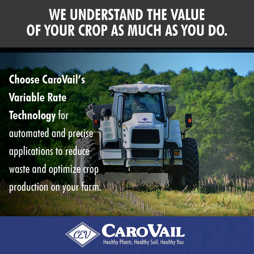 CaroVail Facebook ad