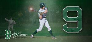 RJ Demeo baseball poster