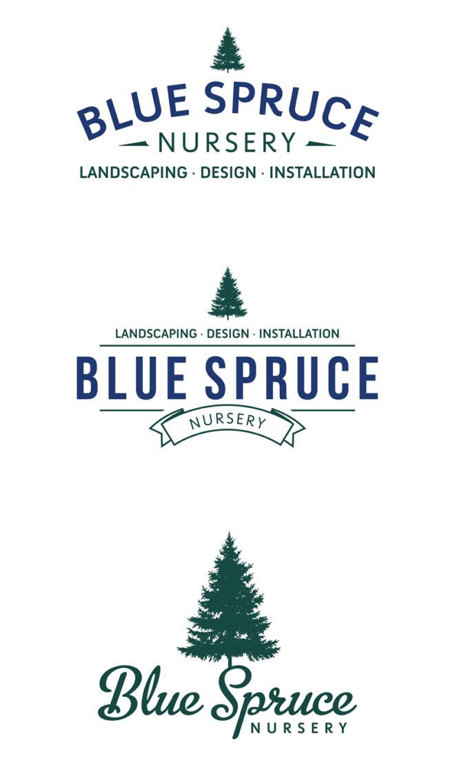 Sample logo designs for Blue Spruce Nursery